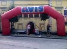 Cantiano Avis