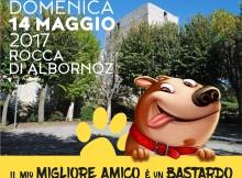 Festa del Cane Meticcio
