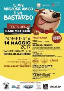 Locandina Festa del Cane Meticcio