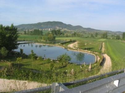 Ladri di trote rubate 250 kg di pesce alla valle dei for Vasche per allevamento trote