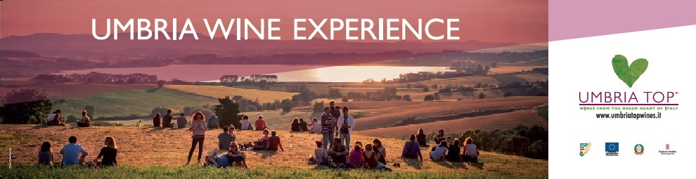 UmbriaWineExperience_grafica